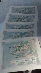 OSM IES Diplomas.jpg